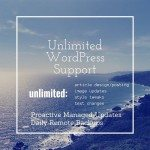 unlimited wordpress monthly support