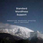 Basic WordPress Support (4)